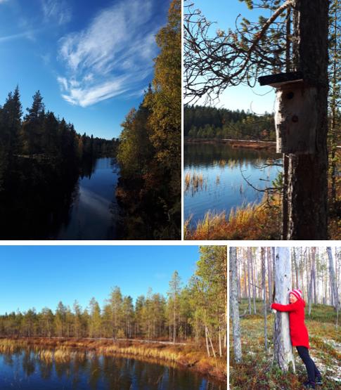 finland nature photos suomussalmi